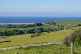 Dorset taxi countryside